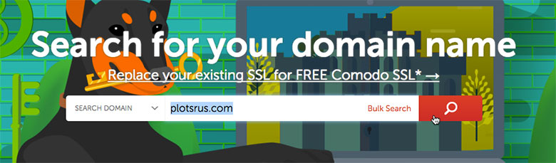 Registering a domain name with Name Cheap is easy!
