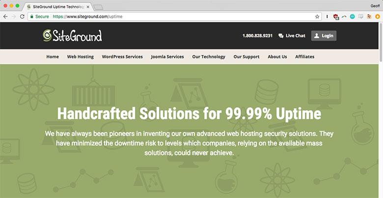 Solid web hosts like SiteGround guarantee 99.9% server uptime.
