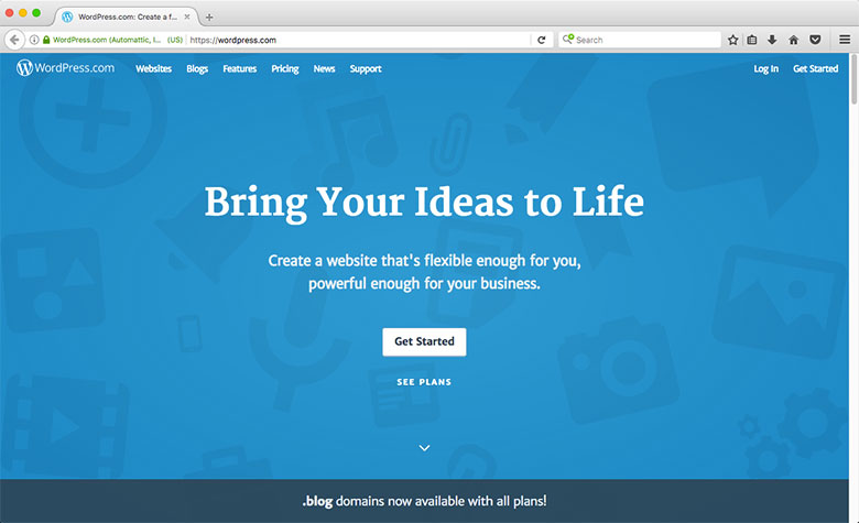 WordPress.com is an example of reliable, free hosting.